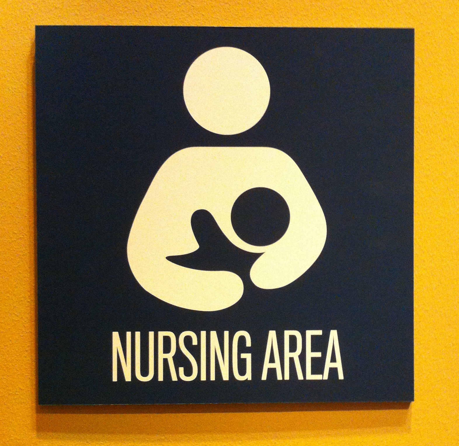 Nursing city college of ny subjects